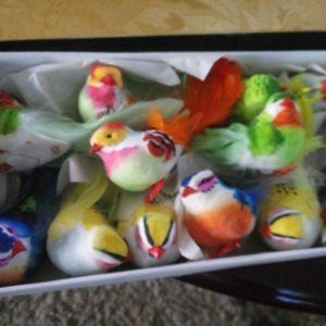 Box of 12 Brite Colored Craft Birds for everything